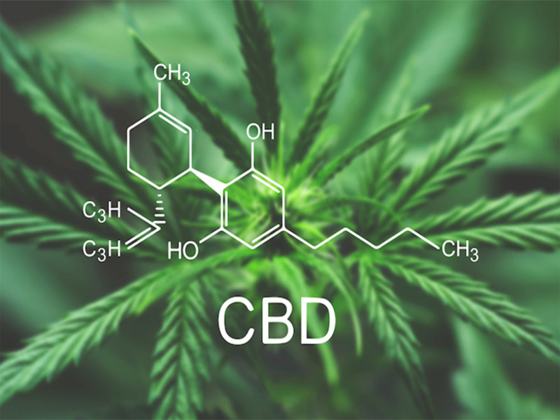 cbd stands for