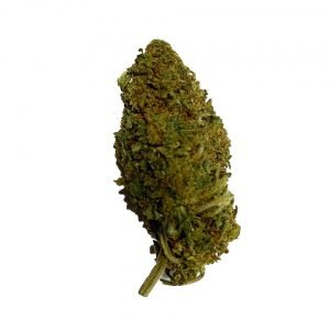 candy kush cbd floare